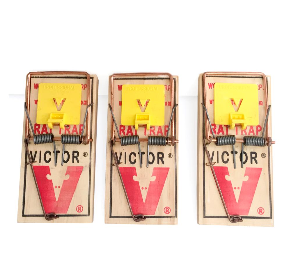 3 trampas para ratas marca victor productos para fumigar - El mejor veneno para ratones ...